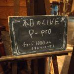 P-Proライブにゲスト出演!